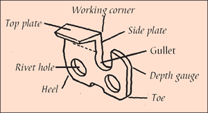 [Image] Parts of a cutter including top plate, working corner, side plate, gullet, depth gauge, toe, heel and rivet hole.