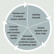 [Image] Diagram showing risk management cycle