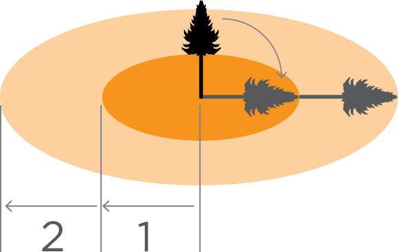 [Image] Diagram showing a tree and shadows where it will fall, with dark orange circle area indicating zone of one felled tree and light orange circle area indicating zone of two felled trees.